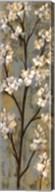 Almond Branch I Fine-Art Print