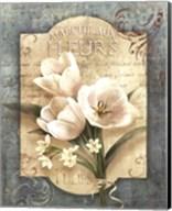 Marche Aux Fleurs Fine-Art Print