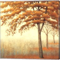 Autum Trees I Fine-Art Print