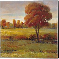 Field in Fall Fine-Art Print
