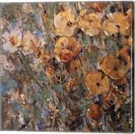 Amber Poppy Field I Fine-Art Print