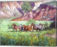 On the Canyon Floor Fine-Art Print