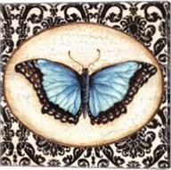 Fanciful Butterfly II Fine-Art Print