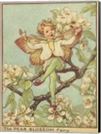 The Pear Blossom Fairy Fine-Art Print