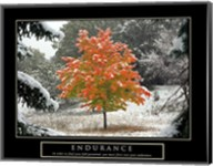 Endurance - Fall Tree Fine-Art Print