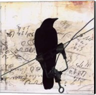 What Crows Reveal I Fine-Art Print