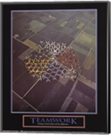 Teamwork-Skydivers Fine-Art Print