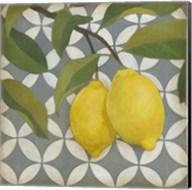 Fruit and Pattern I Fine-Art Print