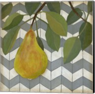 Fruit and Pattern II Fine-Art Print