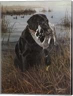 A Friend in the Marsh Fine-Art Print