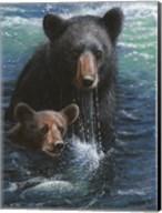 Bearly Swimming Fine-Art Print