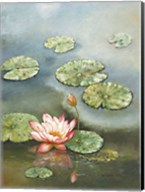 Water Lily With Pink Blossom Fine-Art Print