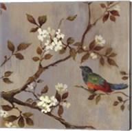 Apple Bloom I ( conversation mini) Fine-Art Print