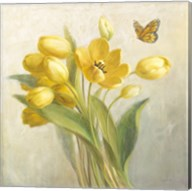 Yellow French Tulips Fine-Art Print