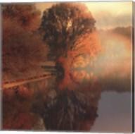 Summer Reflections Fine-Art Print