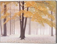 Early Autumn Snow Fine-Art Print