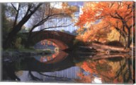 Gapstow Bridge, Fall Fine-Art Print