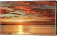 Sunlit Fine-Art Print