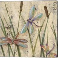 Dancing Dragonflies I Fine-Art Print