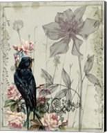 Mauve Melody IV Fine-Art Print