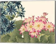 Small Japanese Flower Garden IV Fine-Art Print