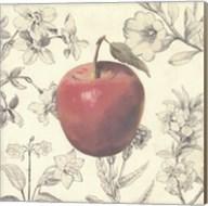 Apple and Botanicals Fine-Art Print