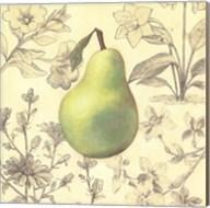 Pear and Botanicals Fine-Art Print