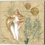 Coastal Map Collage III Fine-Art Print