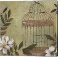 Decorative Bird Cage I Fine-Art Print