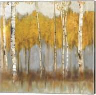 Golden Grove II Fine-Art Print