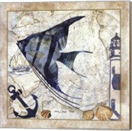 Nautical Fish II Fine-Art Print