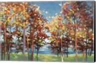 Kaleidoscope Fine-Art Print