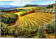 Chianti Vineyards Fine-Art Print