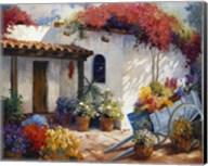 Casa Paloma Fine-Art Print