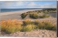 Sandy Shores Fine-Art Print