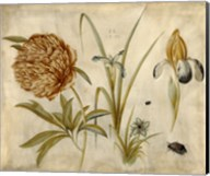 Flowers and Beetles Fine-Art Print