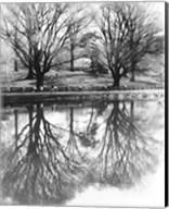 Central Park Lake Fine-Art Print