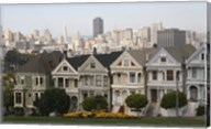 Painted Ladies San Franciso 1 Fine-Art Print