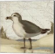 Beach Bird II Fine-Art Print
