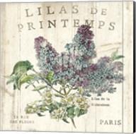 Lilas de Printemps Fine-Art Print