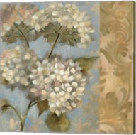 Hydrangea on Soft Blue Fine-Art Print