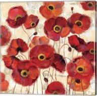 Bold Poppies Fine-Art Print