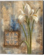 Iris and Tile Fine-Art Print