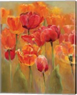 Tulips in the Midst I Fine-Art Print