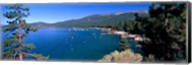 Trees with lake in the background, Lake Tahoe, California, USA Fine-Art Print