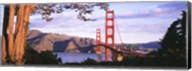 Golden Gate Bridge with Mountains Fine-Art Print
