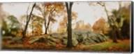 Trees in a park, Central Park, Manhattan, New York City, New York State, USA Fine-Art Print