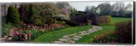 Flowers in a garden, Ladew Topiary Gardens, Monkton, Baltimore County, Maryland, USA Fine-Art Print