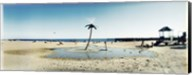 Palm tree sprinkler on the beach, Coney Island, Brooklyn, New York City, New York State, USA Fine-Art Print