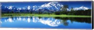 Lake in Denali National Park AK Fine-Art Print